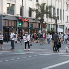 Over 30 masked people and two dogs spread out across the street intersection facing different directions, holding signs