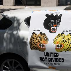 Sign fixed to a car showing BLACK POWER panther, LATINX leopard, and YELLOW PERIL tiger with message UNITED NOT DIVIDED, BLACK LIVES MATTER